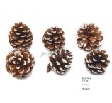 PINE FRUIT  5-7 CM  FROSTED 6 PC/PB