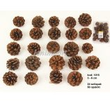 PINE FRUIT MINI  3-5 CM  NATURAL 24 PC/PB