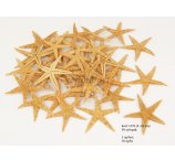 STARFISH 8-10 CM - 50 PC IN PACK