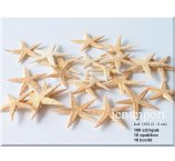 STARFISH 4-6CM - 100 PC/PB