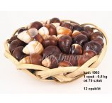 SEA SHELLS JAP.LANDSNAIL  0,5 KG=75 PC.