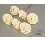 SHOLA LOTUS WHITA  6-7 CM-D- ON WIRE 6 PC/ PB