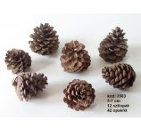 PINE CONE 5CM-7CM  NATURAL -12PC/PACK