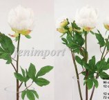 PIWONIA WHITE  84 CM  -FRESH TOUCH