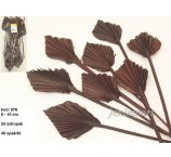 PALM SPEAR MINI 8-10 CM DIAMETER DARK BROWN 24 PC/ PB