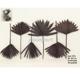 PALM SUN CUT 25-30 CM DARK BROWN 6 PC/PB