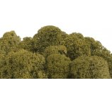 MOSS PRESERVED 250 G/PB LIME GREEN