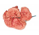 dar orange ROSA 7-8 cm FROM DRY MAGNOLIA LEAFS